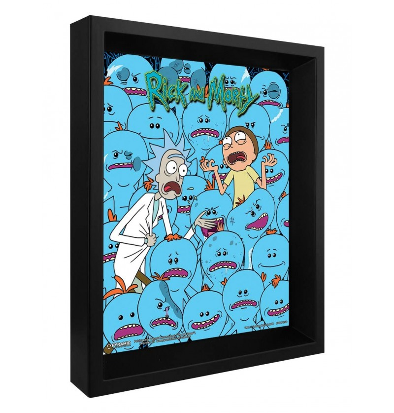 Rick and Morty (Mr....